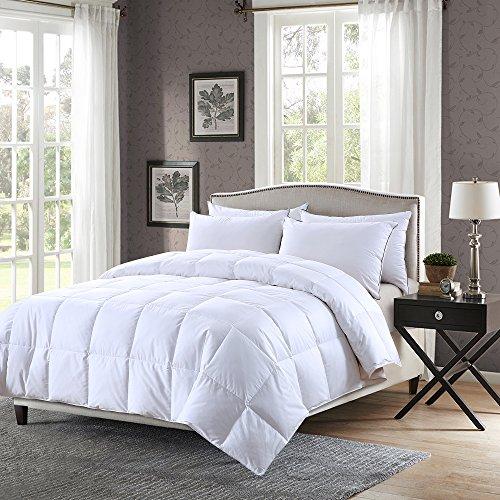 Sl Twin Comforter - 2