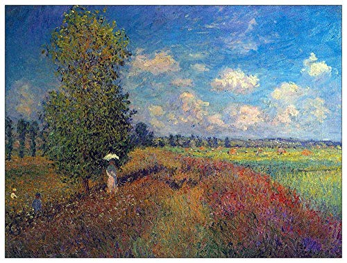 (ArtPlaza TW91884 Monet Claude-Poppy Field in Summer Decorative Panel, 35.5x27.5 Inch, Multicolored)