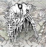 Nano Nucleonic Cyborg Summoning by Behold the Arctopus