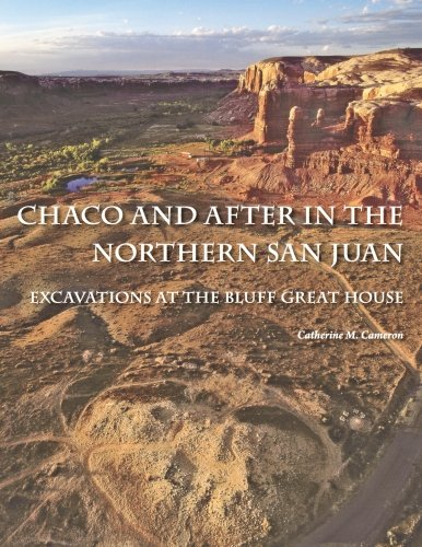 Chaco and After in the Northern San Juan: Excavations at the Bluff Great House
