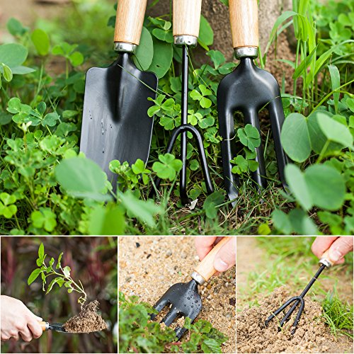 YAPASPT 3 Piece Garden Tools Set - Home Tool Kit for Pot Planting Weeding Transplanting and Digging - Home Practical Gardening Gifts Set with Comfortable Wood Handle Ideal for Indoor/Outdoor by YAPASPT (Image #4)