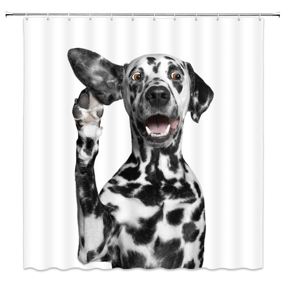 Amazon Dalmatian Dog Shower Curtain Funny Pet Action White Bathroom Decor Accessories Waterproof Hanging Curtains 70x70Inches Polyester Fabric Home