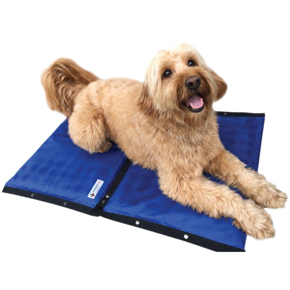 Cooler Dog Turbo Cooling Mat, Medium Sized Dogs