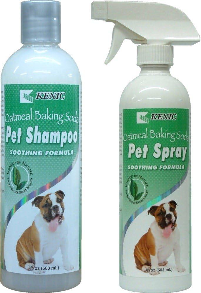 Itchy perro champú y acondicionador de spray Set ~, bicarbonato de harina de avena y Aloe Vera en un coco Base ~ calma seco piel de perro alergias al mismo tiempo que