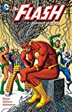 img - for The Flash by Geoff Johns Book Two book / textbook / text book