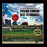 Picking Flowers Next To Roadkill by CRUSHKILL RECORDINGS
