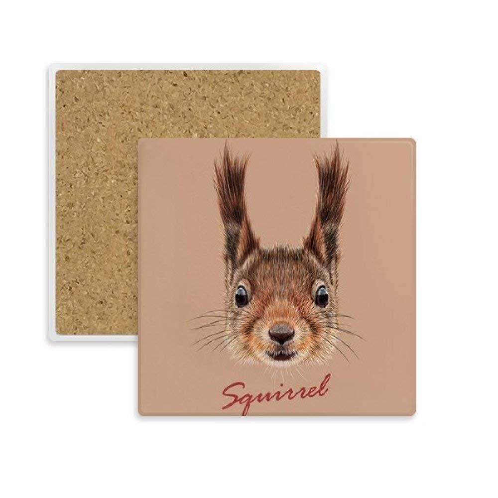 Little Marron longues oreilles /écureuil Animal carr/é Dessous de Verre Tasse mug support absorbant Pierre pour boissons 2/pcs Cadeau
