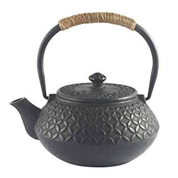 Hwagui 600ml Cast Iron Teapot