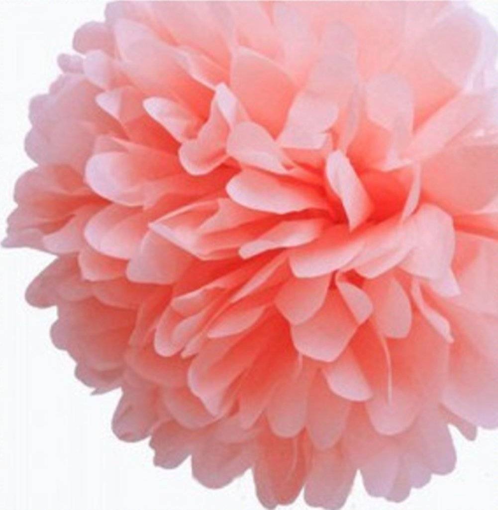 Aimeart Party Tissue Pom Poms 6 Pcs 12-inch Diameter Paper Flower Ball Hanging Decorations, Light Pink