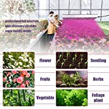 Grow Light for Indoor Plants Full Spectrum Panel