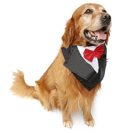 PetFavorites Large Dog Tuxedo Costume - Cat Wedding Bandana Collar with Bow Tie for Halloween -  sc 1 st  Amazon.com & Pet Supplies : PetFavorites Large Dog Tuxedo Costume - Cat Wedding ...