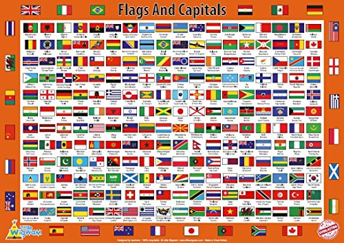 flags of the world poster - 2
