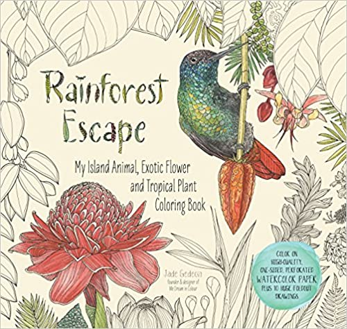 Book's Cover of Rainforest Escape: My Island Animal, Exotic Flower and Tropical Plant Coloring Book (Anglais) Broché – 12 septembre 2016