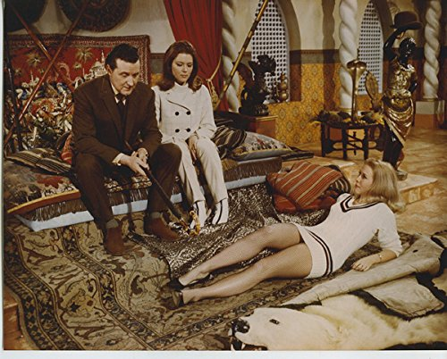 The Avengers Vintage 8x10 Photo Patrick Macnee Diana Rigg Seated Girl On ()