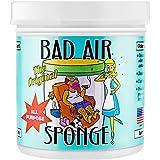 Bad Air Sponge 空气净化剂 除甲醛清除剂除味剂室内新房去异味