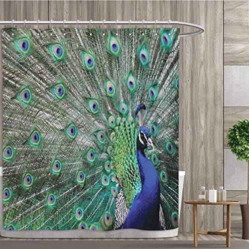 (CHASOEA Peacock,Shower Curtains,Peacock Displaying Elongated Majestic Feathers Open Wings Picture,Satin Fabric Sets Bathroom,Navy Blue Green Pale Brown,Size:W72 x L72 inch)