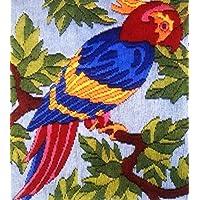 Anchor Stitch Kit - Tropical Parrot
