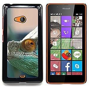 """Qstar Arte & diseño plástico duro Fundas Cover Cubre Hard Case Cover para Nokia Lumia 540 (Camaleón Misteriosa"""")"""