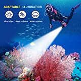 Diving Flashlight, Waterproof Diving Light Max 2000