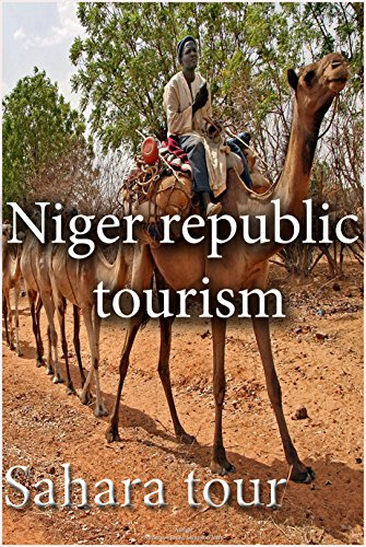 Niger tourism: Sahara tour, in Niger republic