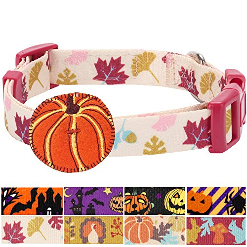 Designer Dog Collars - Blueberry Pet 8 Patterns Fall Obsession Ginkgo Biloba Leaf Designer Dog Collar with Pumpkin, Large, Neck 18