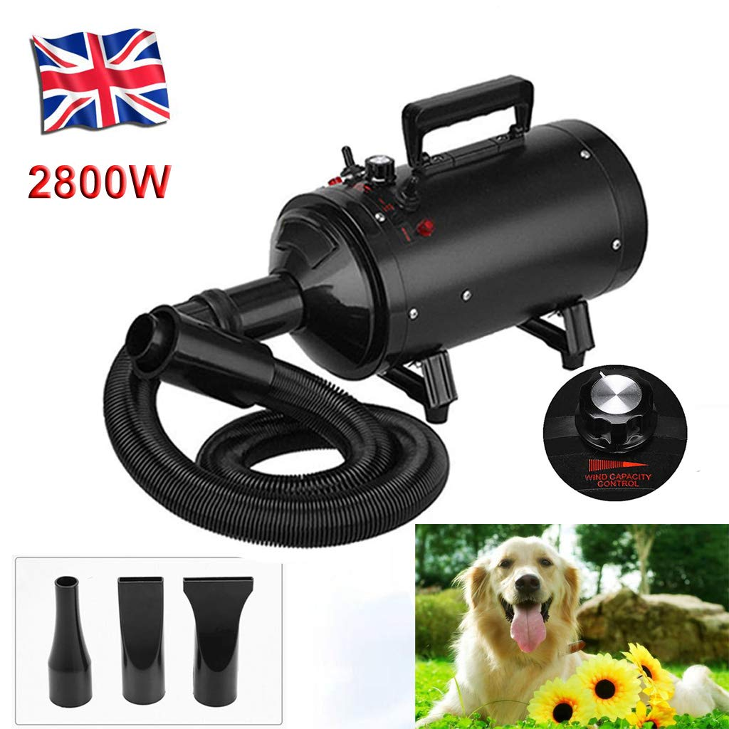 Black Yiyai Pet Grooming Hair Dryer 2800W for Dog Cat with UK Plug, Stepless Powerful Low Noise Blaster Fur Blower 2 Gear Temperature & 3 Nozzles & 8.2ft Hose for Dog Beauty