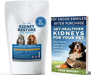 Kidney Restore Softer Dog Treats 16oz. Low Protein Dog Treats for Kidney Support for Canines. Renal Treats for Any Kidney Dog Diet.