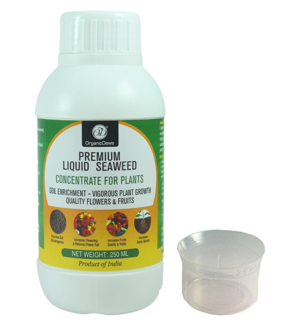 OrganicDews Liquid Seaweed Concentrate for Plants 250 ml with Measuring Cup 25 ml product image