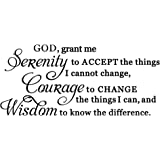 God grant me the serenity to accept things I can not change, the courage to change things i can, and the wisdom to know the d