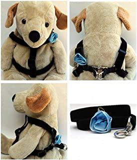 "product image for Diva-Dog 'Blue Carnation' Custom 5/8"" Wide Velvet Dog Step-in Harness with Plain or Engraved Buckle, Matching Leash Available - Teacup, XS/S"