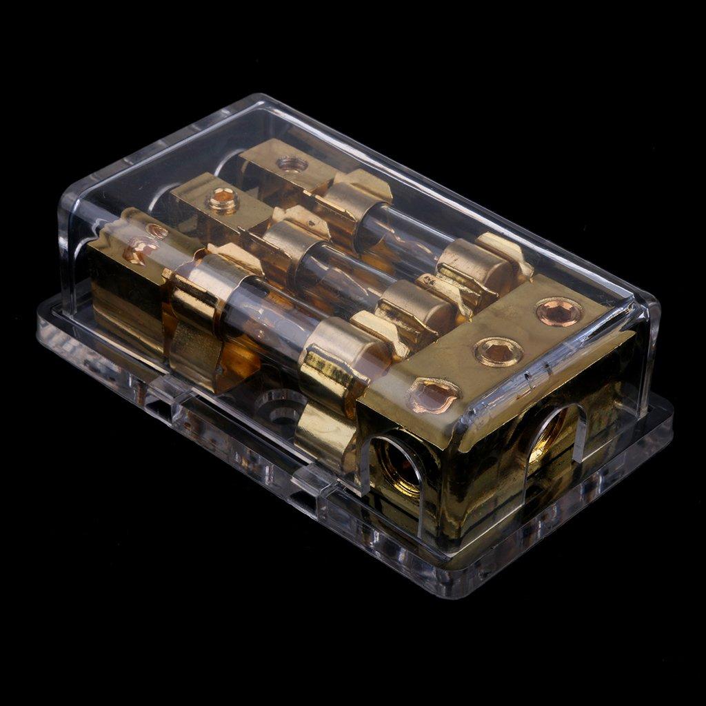 D DOLITY 1 Pieza Portafusibles 60A de 3 v/ías Chapado oro compatible con Coche Autom/óvil FH-005