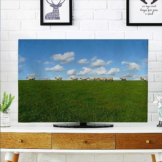 aolankaili Proteja su televisor Llamas Flames Proteger su TV W19 x ...