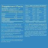 Collagen Peptides Powder   Hydrolyzed Type 1&3