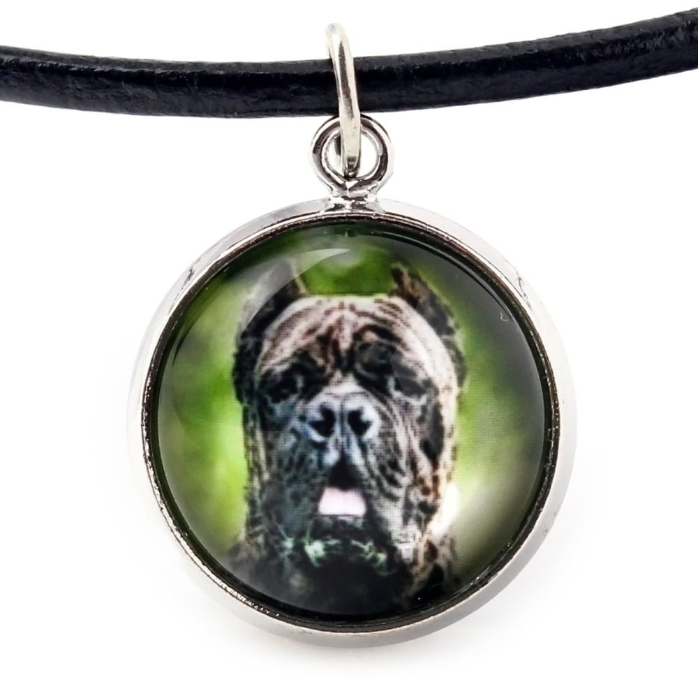 Handmade Photo Jewelry Art Dog Ltd Cane Corso Set of Bracelet and Necklace