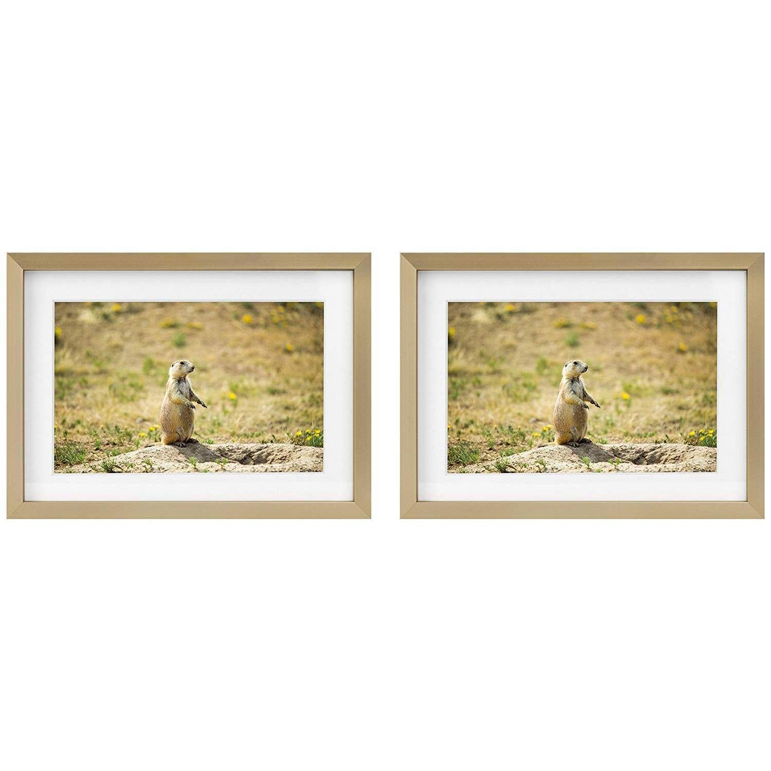 Golden State Art Two 5x7 Picture Frames - Gold Aluminum (Shiny Brushed) - Fit Photo 4x6 with Ivory Mat or 5x7 Without Mat - Metal Frame Real Glass (5x7, Set of 2, Gold) by Golden State Art