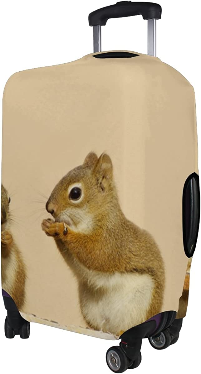 GIOVANIOR Baby Squirrels Luggage Cover Suitcase Protector Carry On Covers