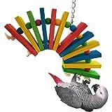 Jouet à Mâcher Perroquet Balançoire Oiseau Pont Arc-en-ciel coloré Jeu de Bois Suspendu pour Perruche Cockatiel Budgie