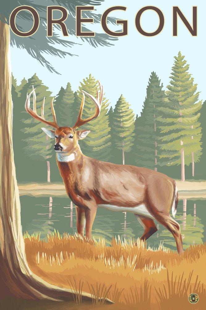 white-tailed Deer – オレゴン州 36 x 54 Giclee Print LANT-19644-36x54 36 x 54 Giclee Print  B017EA07IS