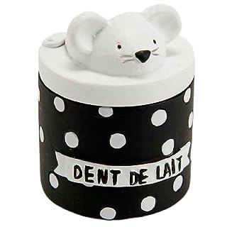 JiXUN Bo/îte de Rangement pour proth/èses dentaires avec Filet Suspendu