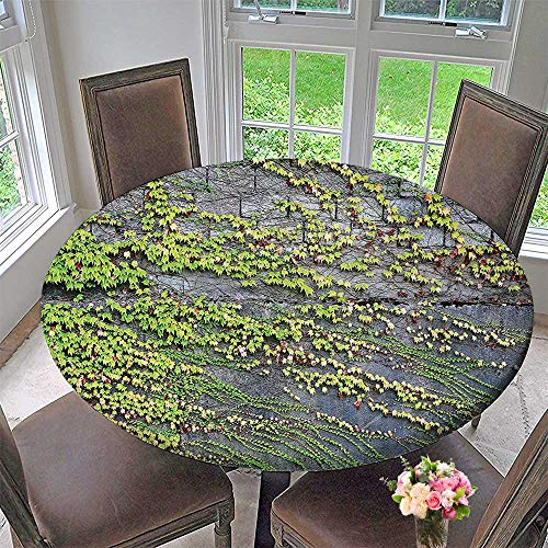 Mikihome Picnic Circle Table Cloths Wall with Growing Creeper Plants Leafs Natural Beauty Illustration Green Grey for Family Dinners or Gatherings 35.5