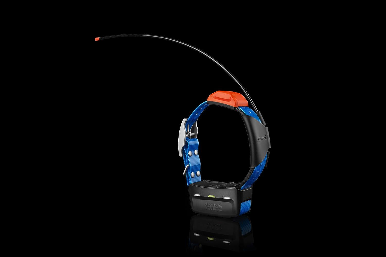 Garmin T5 GPS Dog Collar Image 2