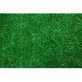 Indoor/Outdoor Green Artificial Grass Turf Area Rug 9'x12'
