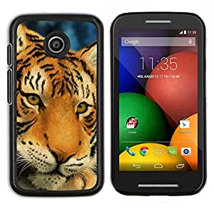 LECELL--Funda protectora / Cubierta / Piel For Motorola Moto E -- Tigre triste Sleepy Cansado Big Cat felina --