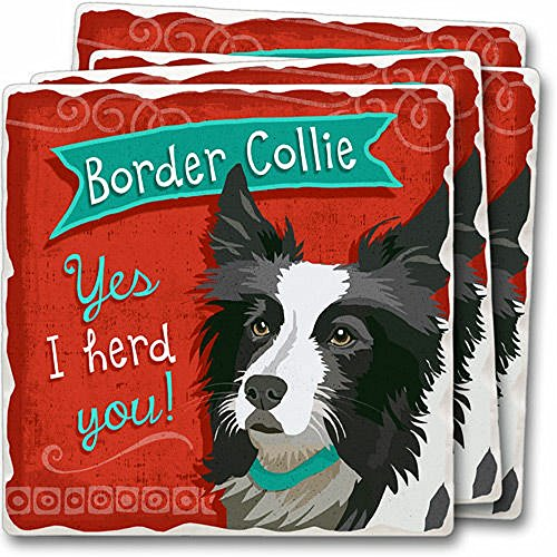 Highland Collies Border (Dog Breed Tumbled Stone Coaster Set of 4, Highland Graphics (Border Collie))