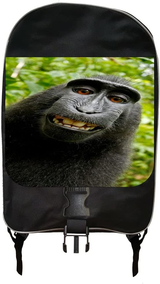 Monkey Selfie Backpack