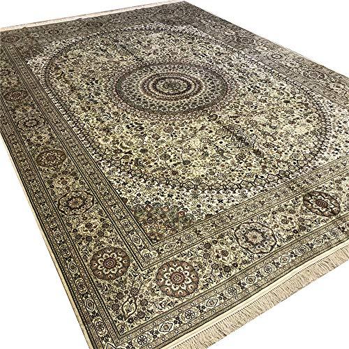 Camel Carpet Antique Persian Rug Silk Hand Made Oriental Rugs 9'x12′