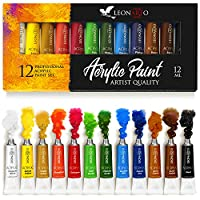 Acrylic Paint Set - Painting on Canvas Glass Crafts Fabric Clay Ceramic Nails Wood Rocks - Artist Paints for Kids Adults Beginners - Non toxic Heavy body Acrylic Paints set 12 ml 12 tubes