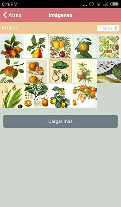 Amazon.com: Frutas y Verduras de Otoño: Appstore for Android