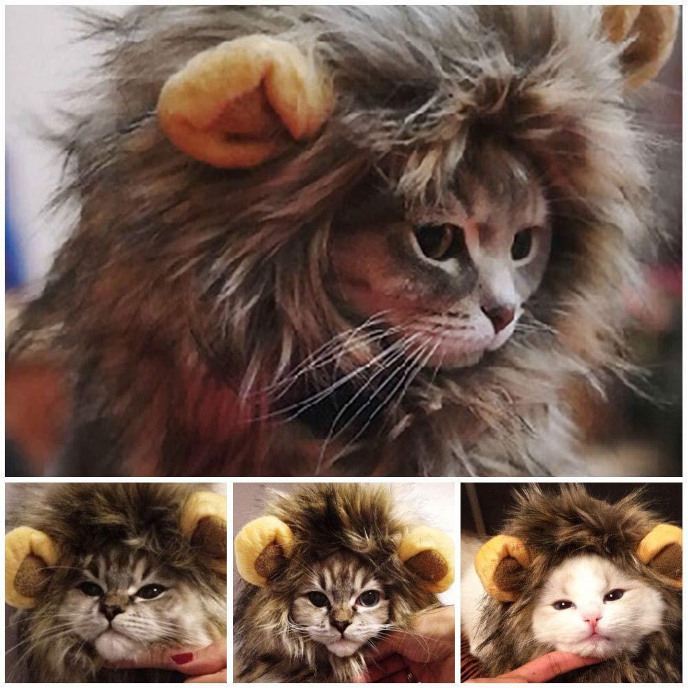 UWLion Mane para Gato, Lindo Disfraz de Mascota Peluca de león con Orejas para Gato y pequeño Perro: Amazon.es: Productos para mascotas