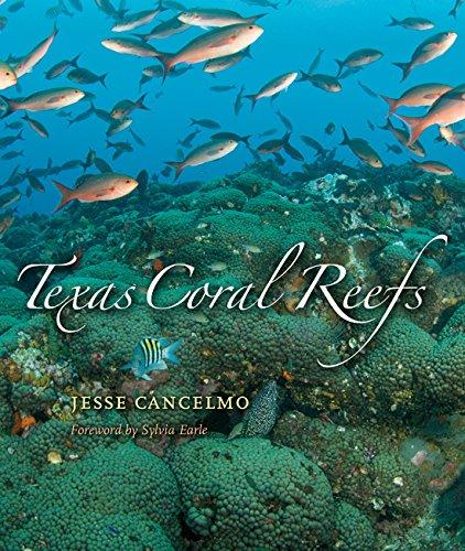 Texas Coral Reefs (Gulf Coast Books, sponsored by Texas A&M University-Corpus Christi)
